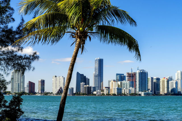 Image result for Miami